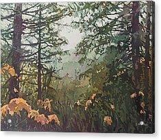 Fog Over Croisan Creek Acrylic Print by Jenny Armitage