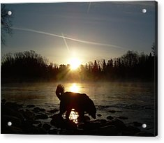 Acrylic Print featuring the photograph Fog Over Mississippi River by Kent Lorentzen