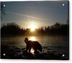 Fog Over Mississippi River Acrylic Print by Kent Lorentzen