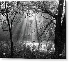 Fog Rays Acrylic Print