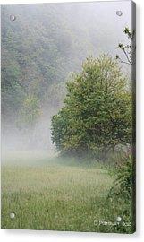 Fog Rising Acrylic Print