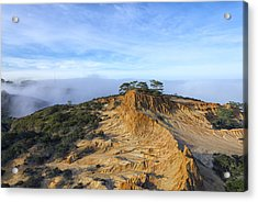 Fog Rolling In Acrylic Print by Joseph S Giacalone