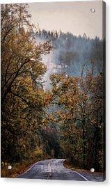 Acrylic Print featuring the photograph Foggy Autumn Road  by Saija Lehtonen