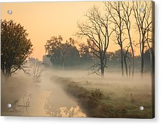 Foggy Fall Morning On Gary Avenue Acrylic Print
