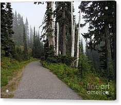 Foggy Forest Acrylic Print by Silvie Kendall