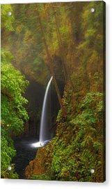 Foggy Metlako Falls Acrylic Print by David Gn