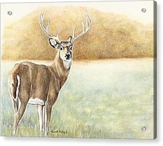 Foggy Morning Buck Acrylic Print by Charlotte Yealey