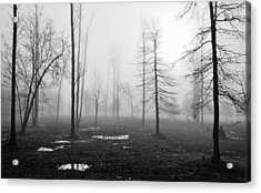 Foggy Morning Acrylic Print by Conn Hutzell