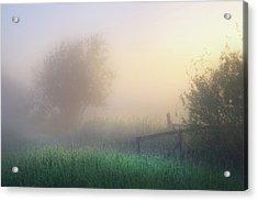 Acrylic Print featuring the photograph Foggy Morning by Dan Jurak