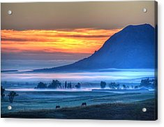 Acrylic Print featuring the photograph Foggy Morning by Fiskr Larsen