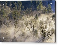 Foggy Morning In Sandy River Valley Acrylic Print by David Gn