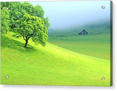 Foggy Morning In The Valley Acrylic Print by Eggers Photography