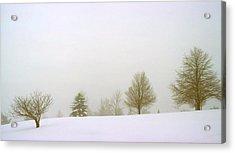Foggy Morning Landscape 15 Acrylic Print by Steve Ohlsen
