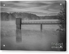 Foggy Morning Acrylic Print by Lisa Plymell
