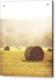 Foggy Morning Acrylic Print by Tamyra Ayles