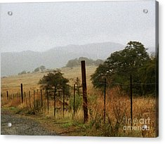 Foggy Wet Morning Acrylic Print by Robert Ball