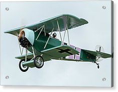 Fokker D.vi Overhead Acrylic Print by Liza Eckardt