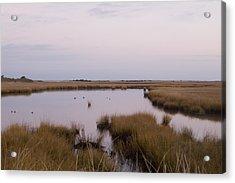 Folgers Marsh Nantucket Acrylic Print by Henry Krauzyk