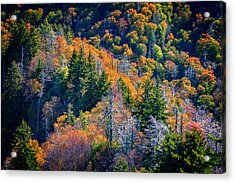 Foliage From Chimney Tops Acrylic Print