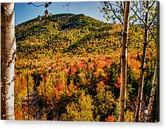 Foliage View From Crawford Notch Road Acrylic Print by Jeff Folger