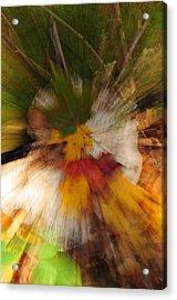 Foliage Zoom Acrylic Print by Nancy Marshall