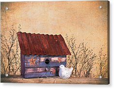 Folk Art Birdhouse Still Life Acrylic Print by Tom Mc Nemar