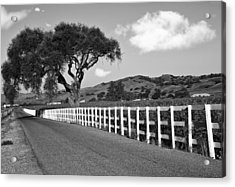 Follow The Fence Acrylic Print by Patricia Stalter