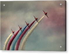 Follow The Leader Acrylic Print by Phil Clements