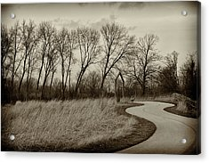 Acrylic Print featuring the photograph Follow The Path by Elvira Butler