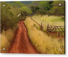 Follow The Red Dirt Road Acrylic Print