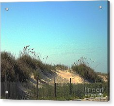 Folly Beach Sc Dunes Acrylic Print