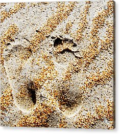 Foot Prints  -  Part 2 Of 3 Acrylic Print by Sean Davey