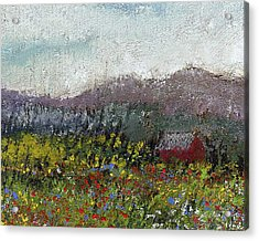 Foothills Meadow Acrylic Print by David Patterson