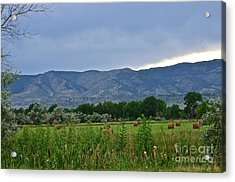 Foothills Of Fort Collins Acrylic Print