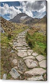 Footpath To Tryfan Acrylic Print by Adrian Evans