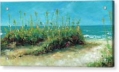 Footprints In The Sand Acrylic Print by Frances Marino