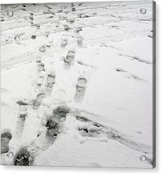Footprints In The Snow Acrylic Print by Janis Beauchamp