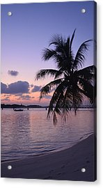 Footsteps Acrylic Print by Corinne Rhode