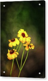 For Everything There Is A Season Acrylic Print