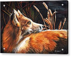 For Fox Sake Acrylic Print