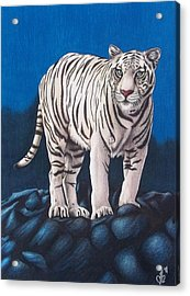 Acrylic Print featuring the drawing For Jurek by Danielle R T Haney