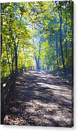 Forbidden Drive - Philadelphia Acrylic Print by Bill Cannon