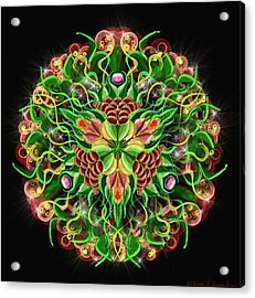Forbidden Flower Acrylic Print