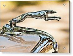 Ford Lincoln Greyhound Hood Ornament Acrylic Print by Jill Reger
