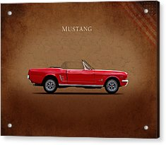 Ford Mustang 289 Acrylic Print by Mark Rogan