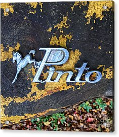 Acrylic Print featuring the photograph Ford Pinto I by Terry Rowe