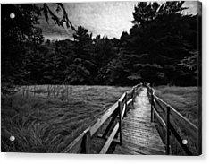 Fore River Marsh Acrylic Print