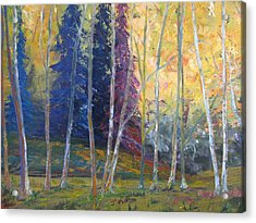 Forest At Twilight Acrylic Print by Belinda Consten