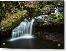 Forest Breeze Acrylic Print by Edgars Erglis