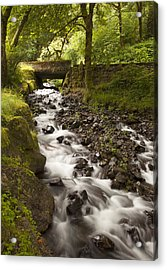 Forest Bridge - Columbia River Gorge Acrylic Print by John Gregg
